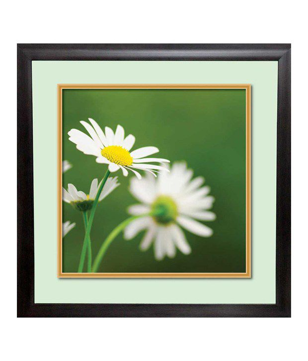Mataye Graphics White Acrylic Floral Painting With Frame