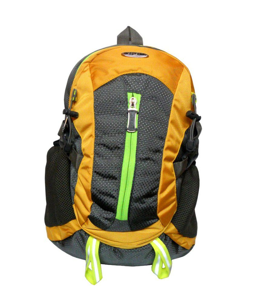 Donex Laptop Compatible Backpack