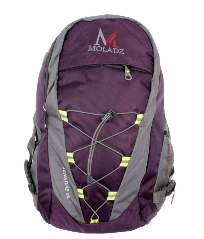 Moladz Purple Polyester Laptop Backpack