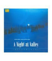 https://www snapdeal com/product/a-night-at-valley-audio