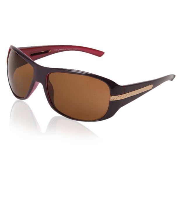Mayhem Mayhem Appealing Brown-Black Sunglasses