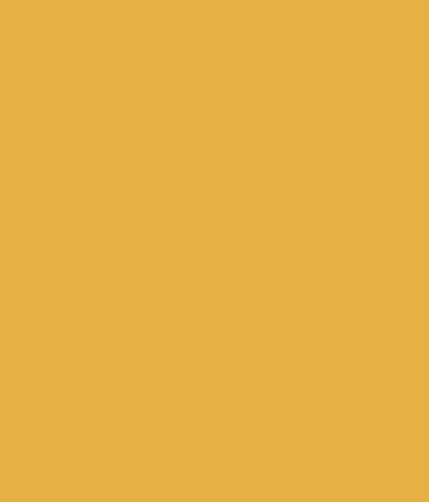 Fresh White Gold Paint