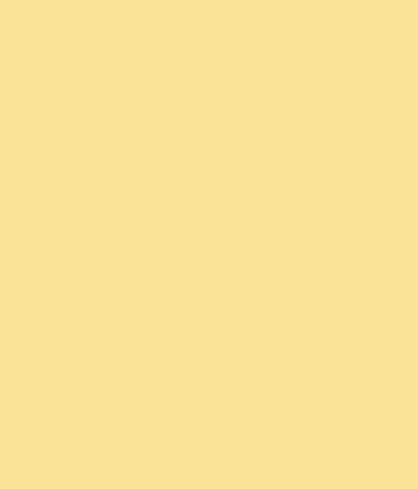 Asian Paints Apcolite Premium Enamel Gloss Pale Cream 0328