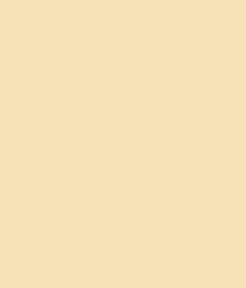 Buy Asian Paints Enamel Pale Cream 0328 Online At Low