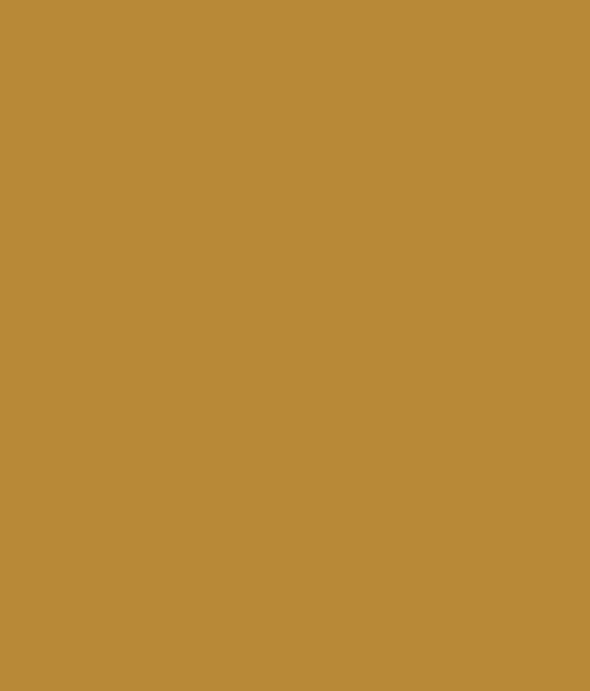 buy asian paints ace exterior emulsion gold mine online at low
