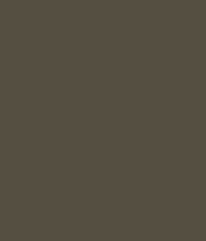 Buy asian paints ace exterior emulsion bravo online at low price in india snapdeal - Asian paints exterior emulsion concept ...