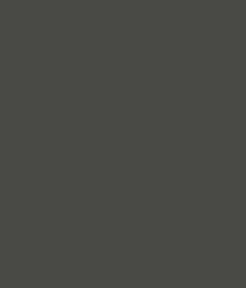 Buy Asian Paints Ace Exterior Emulsion Coal Mine Online
