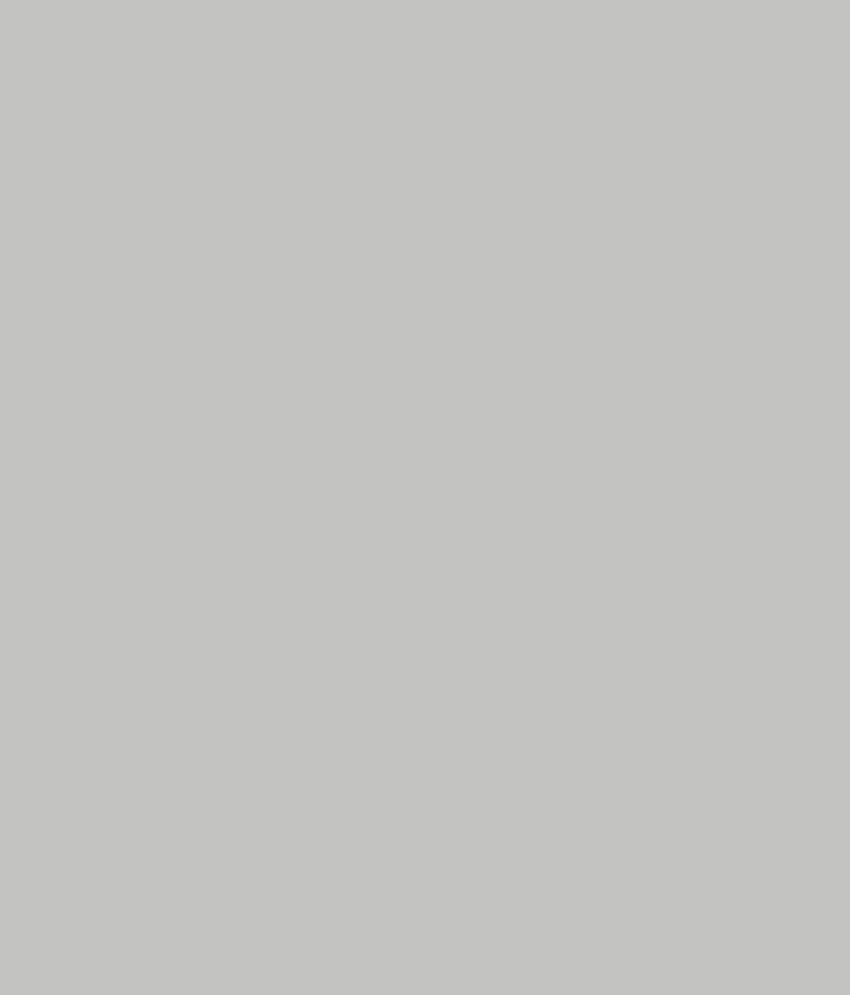 Buy Asian Paints Ace Exterior Emulsion Metallic Grey