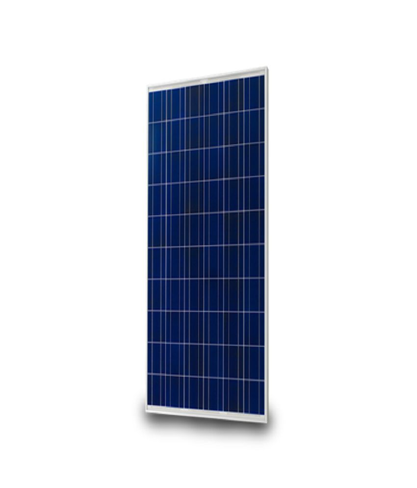 elecssol 40watt solar panel module solar panels price in india buy rh snapdeal com