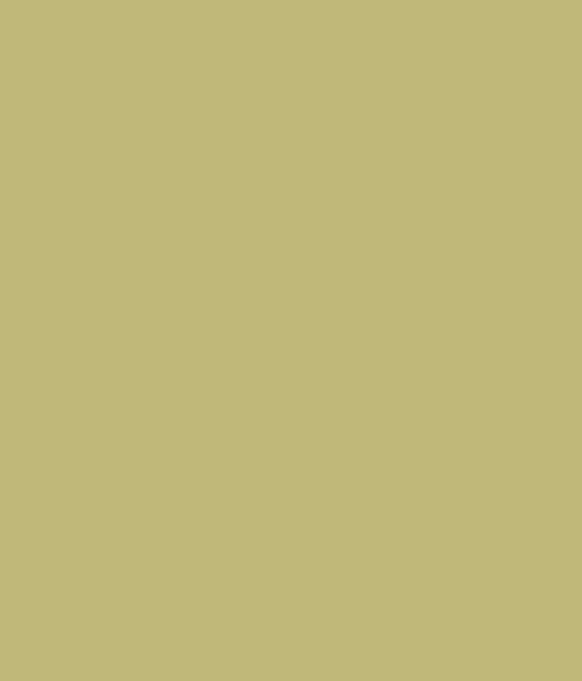 Buy Asian Paints Apex Exterior Emulsion Bambi Beige Online At Low Price In India Snapdeal