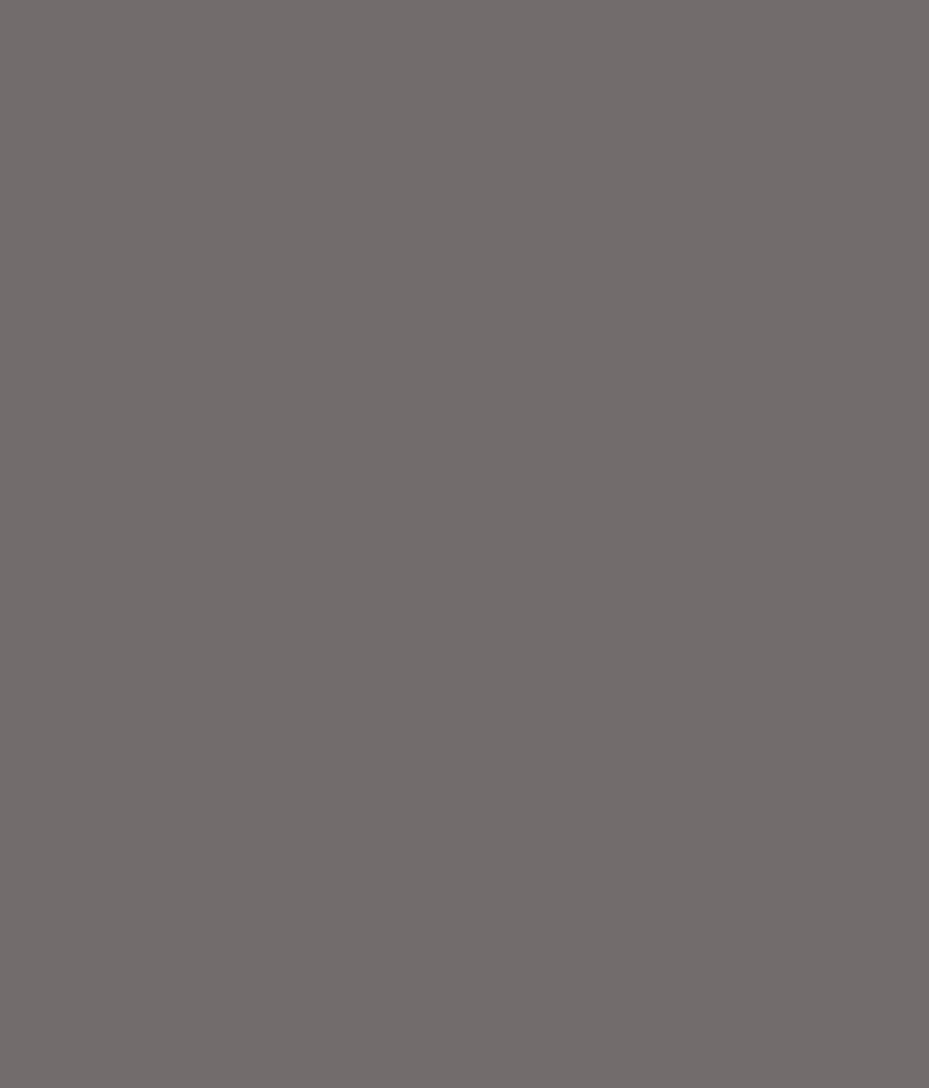 Buy asian paints apex exterior emulsion muted grey online at low price in india snapdeal - Asian paints exterior emulsion concept ...