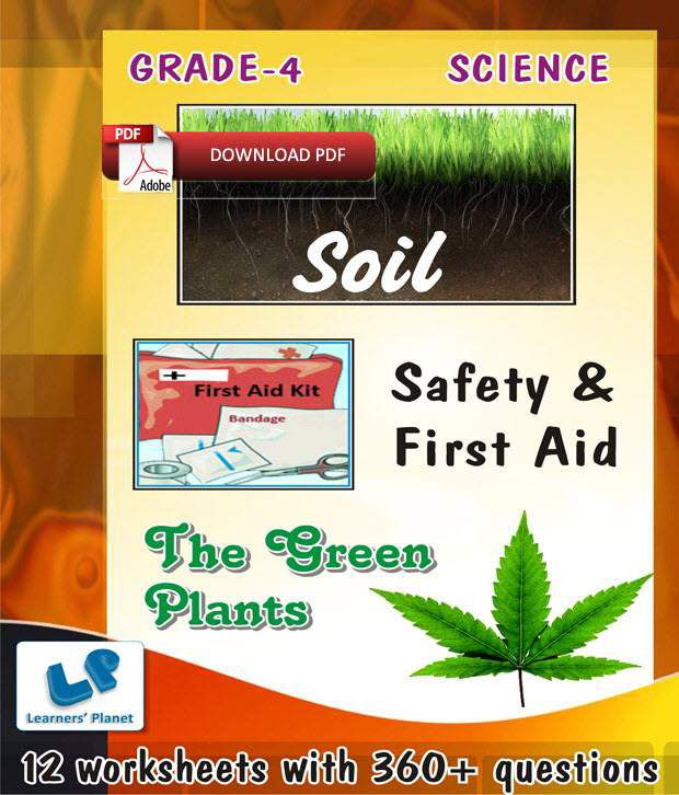 Grade-4-Science-Safety-First-Aid,Soil,The-Green-Plants-WB (E