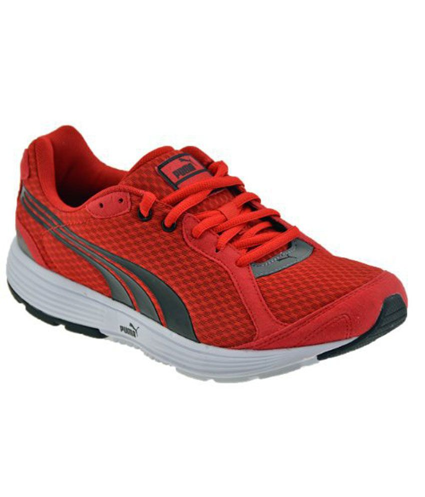 Puma Shoes Offer Price
