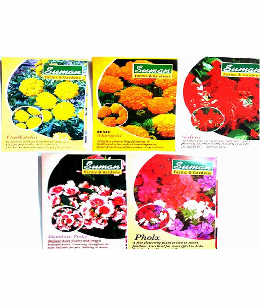 ... Suman Garden Suppliers Vegetable Seeds  Combo Pack Of 3 ...