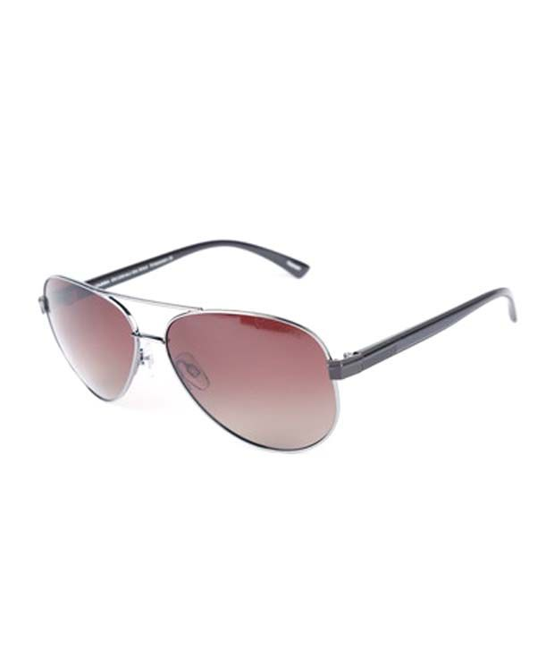 Izarra Brown Metal Round Aviator Sunglasses