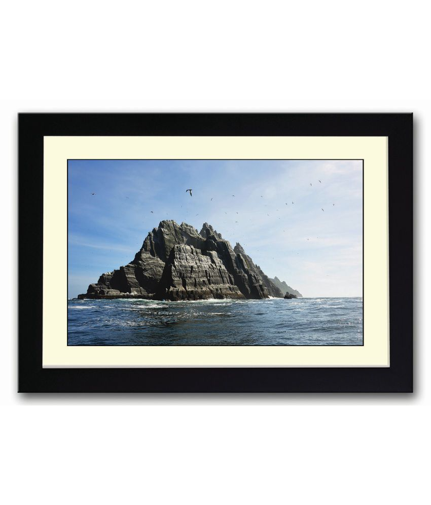 Artifa Seagulls Over The Island Framed Poster