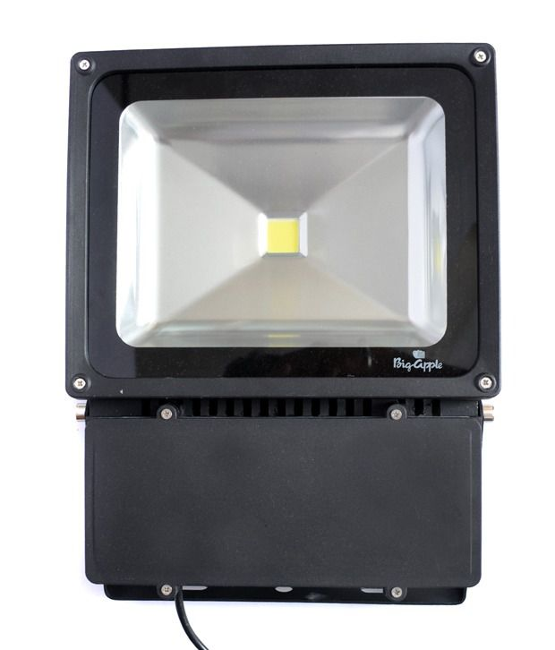 Bigapple Cool White LED Flood Light (100.00 Watts)