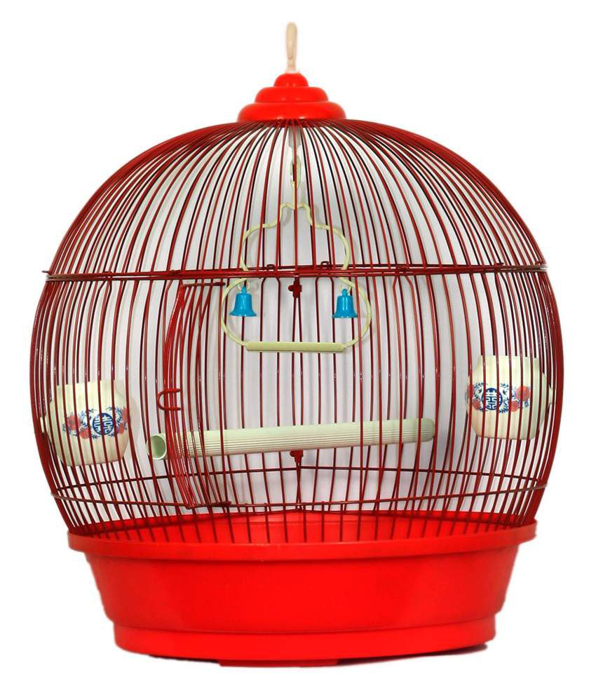 petshop7 pet bird cage finchs and love birds and parrot cage red rh snapdeal com