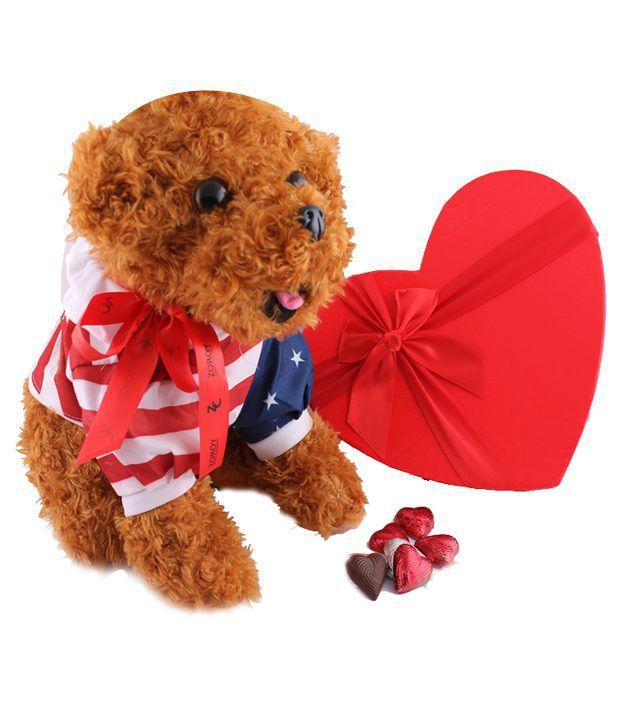 Zoroy Luxury Chocolate Valentine day Puppy Chocolate Chocolate Box Valentine Chocolate Gift Teddy puppy 270 gm
