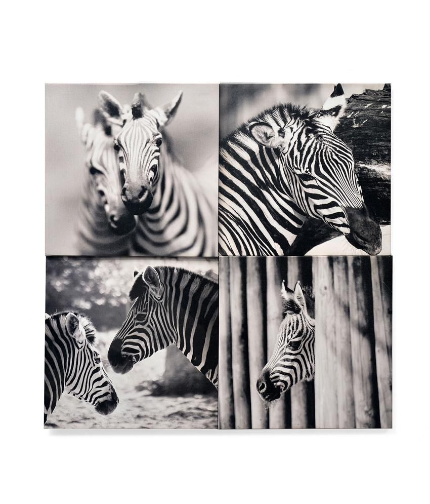 Nilkamal Textured Zebra Canvas Painting - Set Of 4