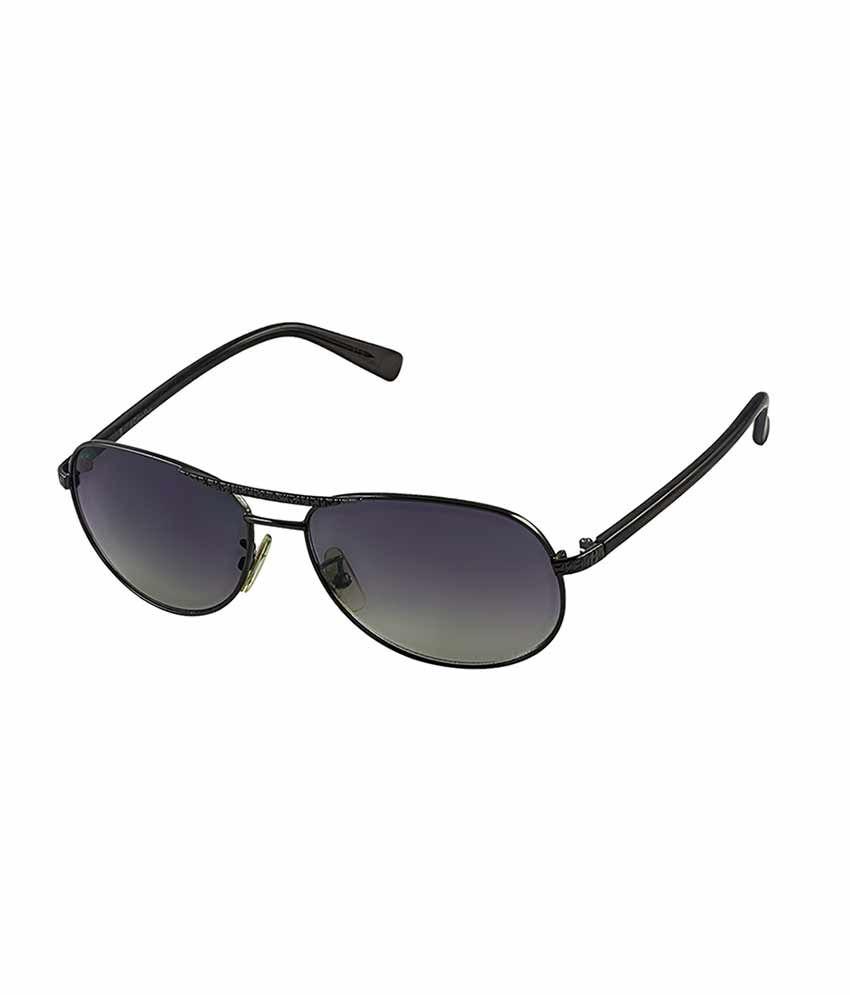 704b52554d1 Calvin Klein Jeans Purple Preppy Sunglasses