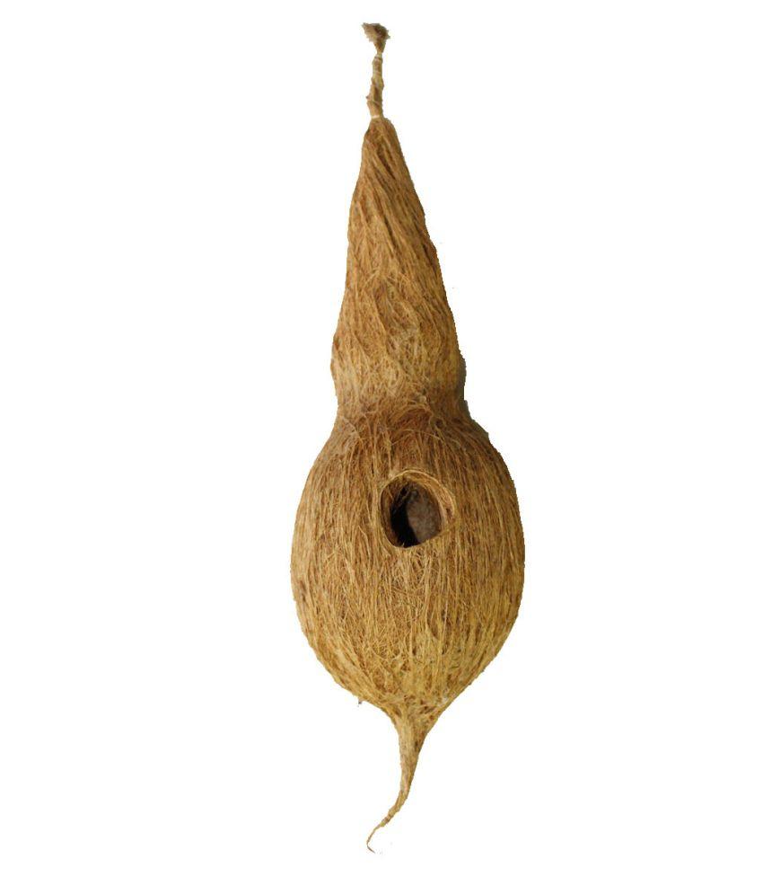 Jainsons Bird Brown Wooden Nest Small