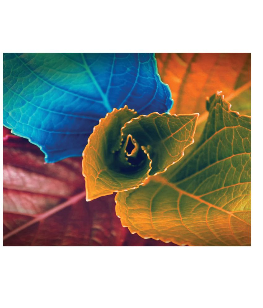 Sleep Nature's Canvas paintings Canvas Art Prints Without Frame Single Piece