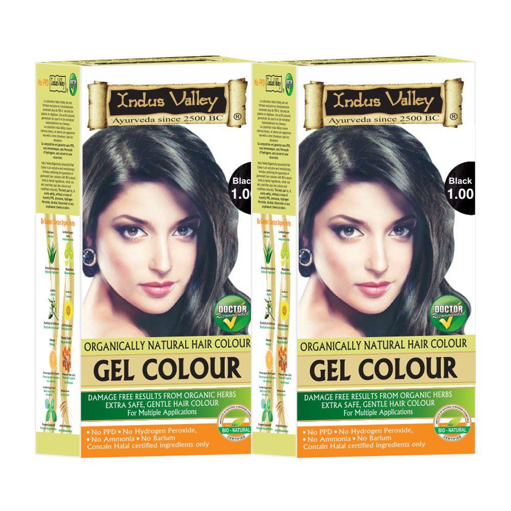 Indus Valley Each Hair Fibers Gel Black 220 g Pack of 2