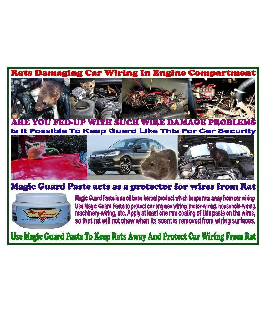 Car & Motorbike Care From Rat Magic Guard Paste
