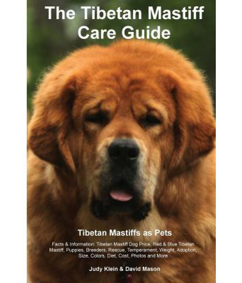 The Tibetan Mastiff Care Guide  Tibetan Mastiff as Pets Facts &  Information: Tibetan Mastiff Dog Price, Red & Blue Tibetan Mastiff,  Puppies, Breeders,