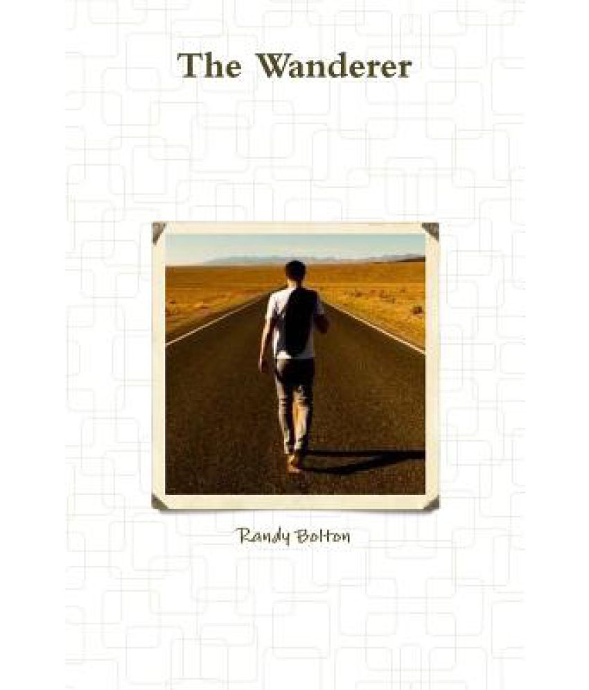 The Wanderer Summary & Study Guide