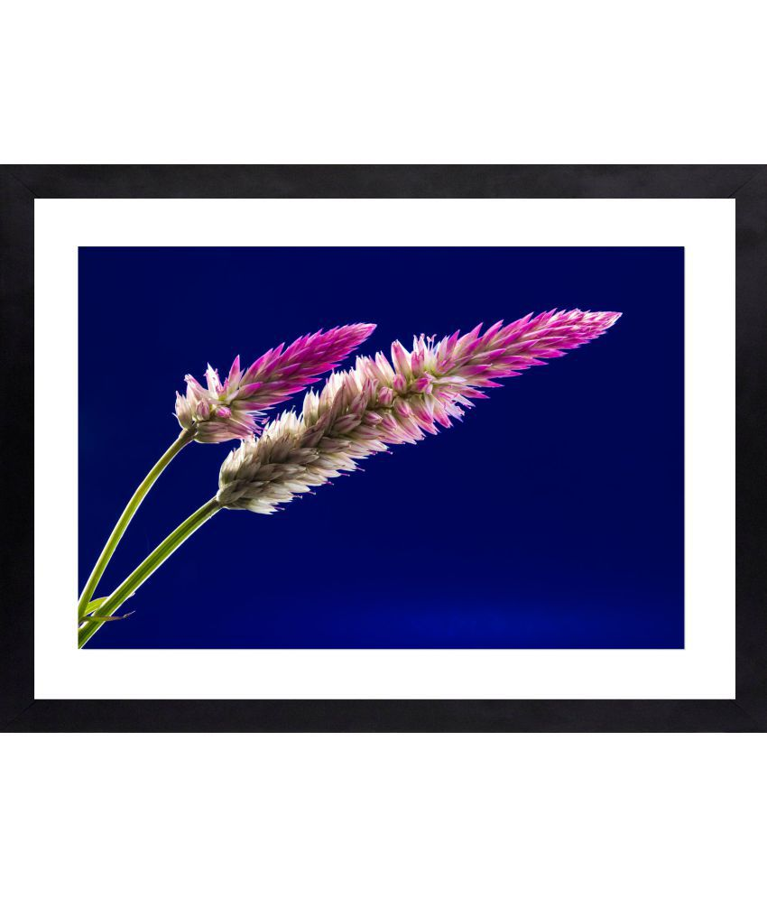 Craftsfest Flower Canvas Painting With Frame Single Piece