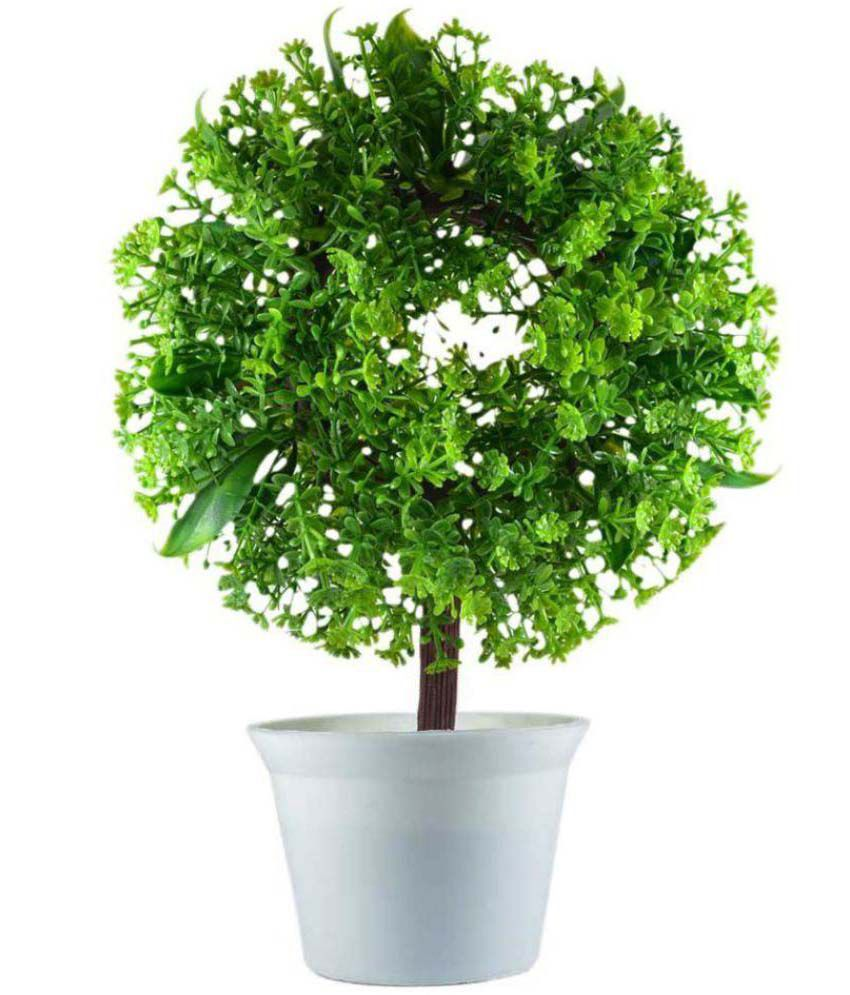 Green plant indoor artificial plant green multicolour for Indoor green plants images