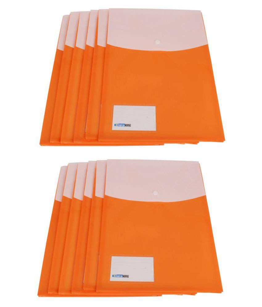 DataKing Expandable Double Pocket Bag - Set of 12