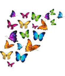 MeSleep Butterfly Vinyl Multicolour Wall Sticker - Pack Of 1