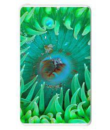 Hamee Hamee Disney Pixar Licensed Finding Dory 10000 MAhPowerBank 10000 -mAh Li-Polymer Power Bank Green