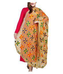 Raj Multicoloured Chiffon Phulkari Dupatta