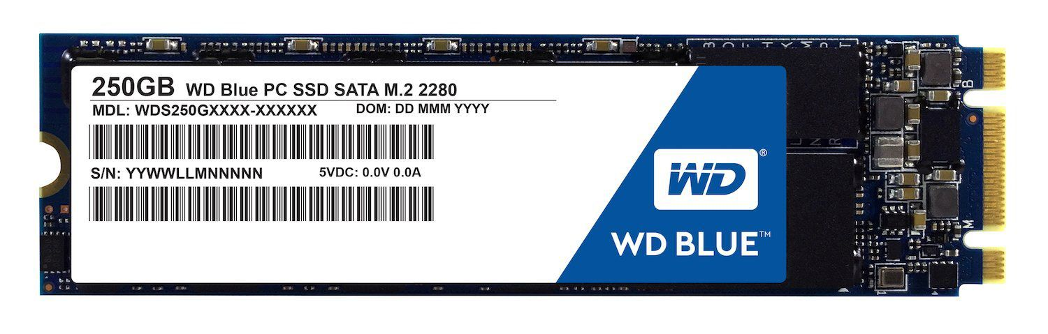 WD WDS250G1B0B 250 GB SSD Internal Hard drive