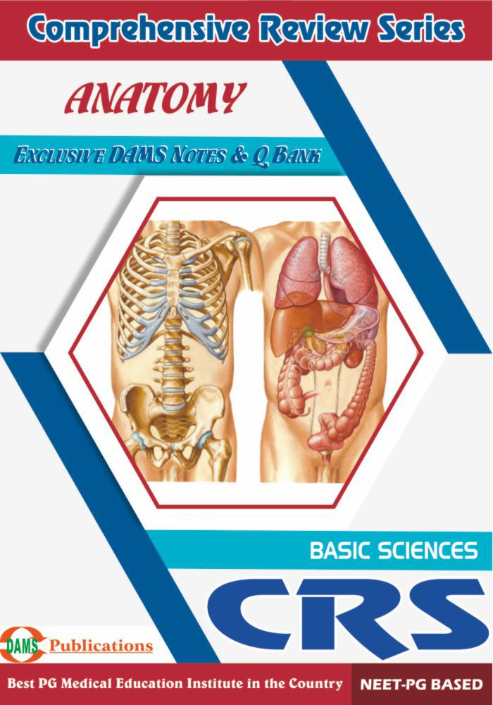 DAMS CRS-Anatomy 2018: Buy DAMS CRS-Anatomy 2018 Online at Low Price ...