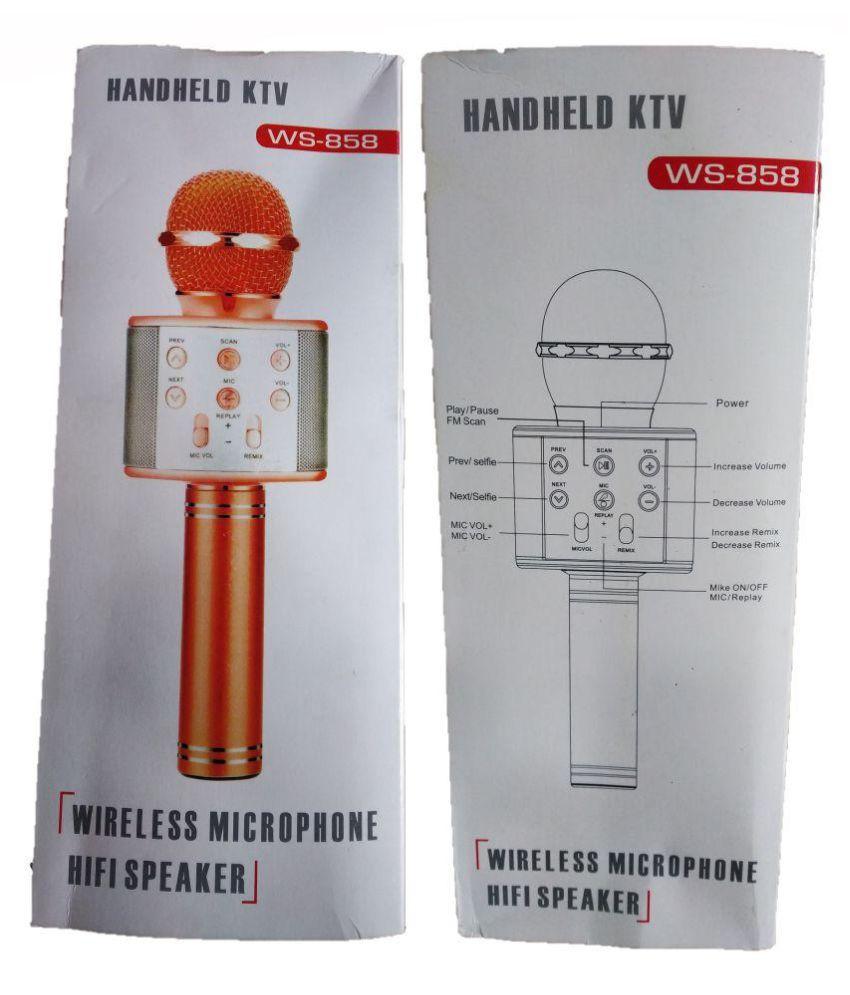 RGB GROUP WS-858 WIRELESS KARAOKE MICROPHONE HIFI SPEAKER Wireless  Microphone