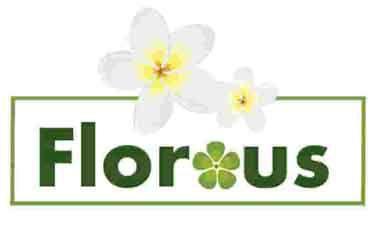 Florous