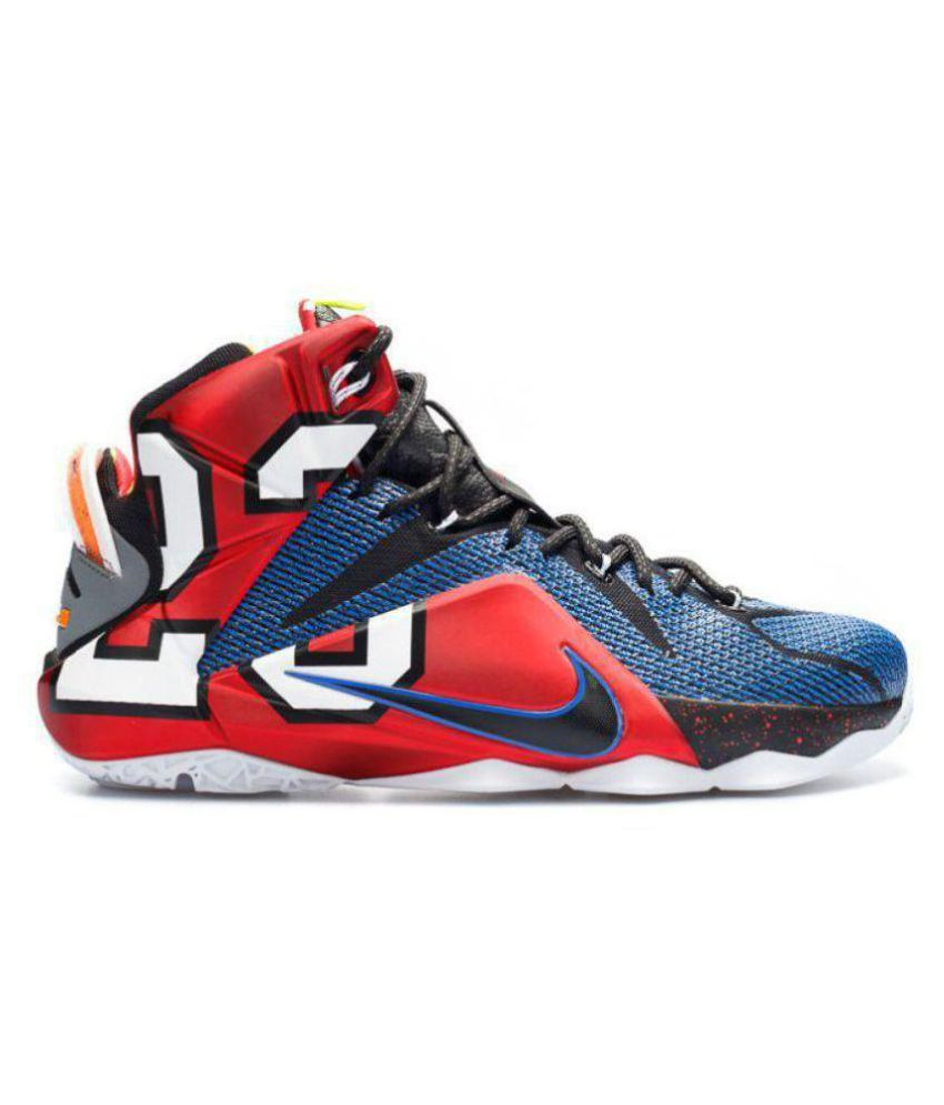 Nike LEBRON X12 EIDITION SPORT 23 Multi Color Basketball Shoes
