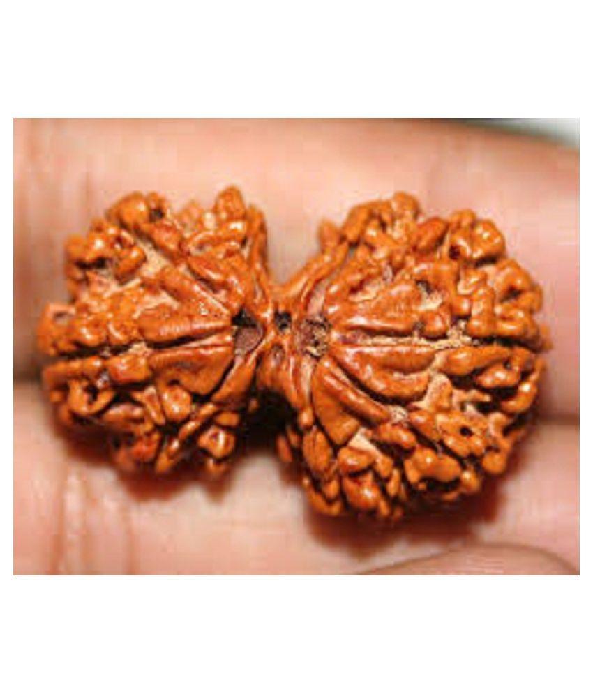 9STARS GALLERY Gauri Shankar Nepal Wood Brown Rudraksha With Silver Pendant Certified By Lab