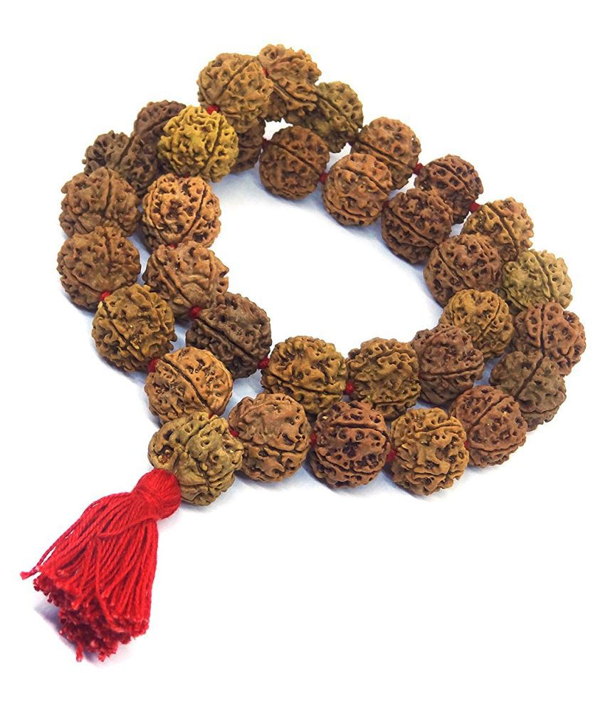 5 MUKHI (FACE) RUDRAKSHA MALA Nepal 35+1 BEADS-14-16 MM- AA Quality-Energized 5 Mukhi Kantha Mala 5 MUKHI (FACE) RUDRAKSHA MALA