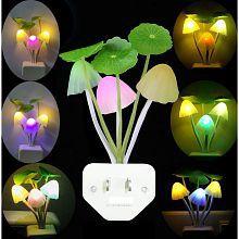 Decorative Night Lamps