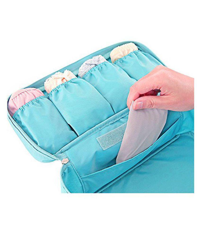 Kanha Blue Multipurpose Lingerie Baby Travel Bag