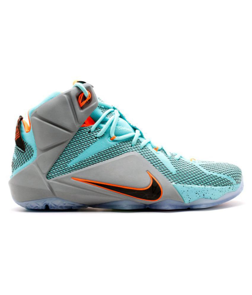 san francisco 8e646 e9c5a Nike 2018 Lebron X11