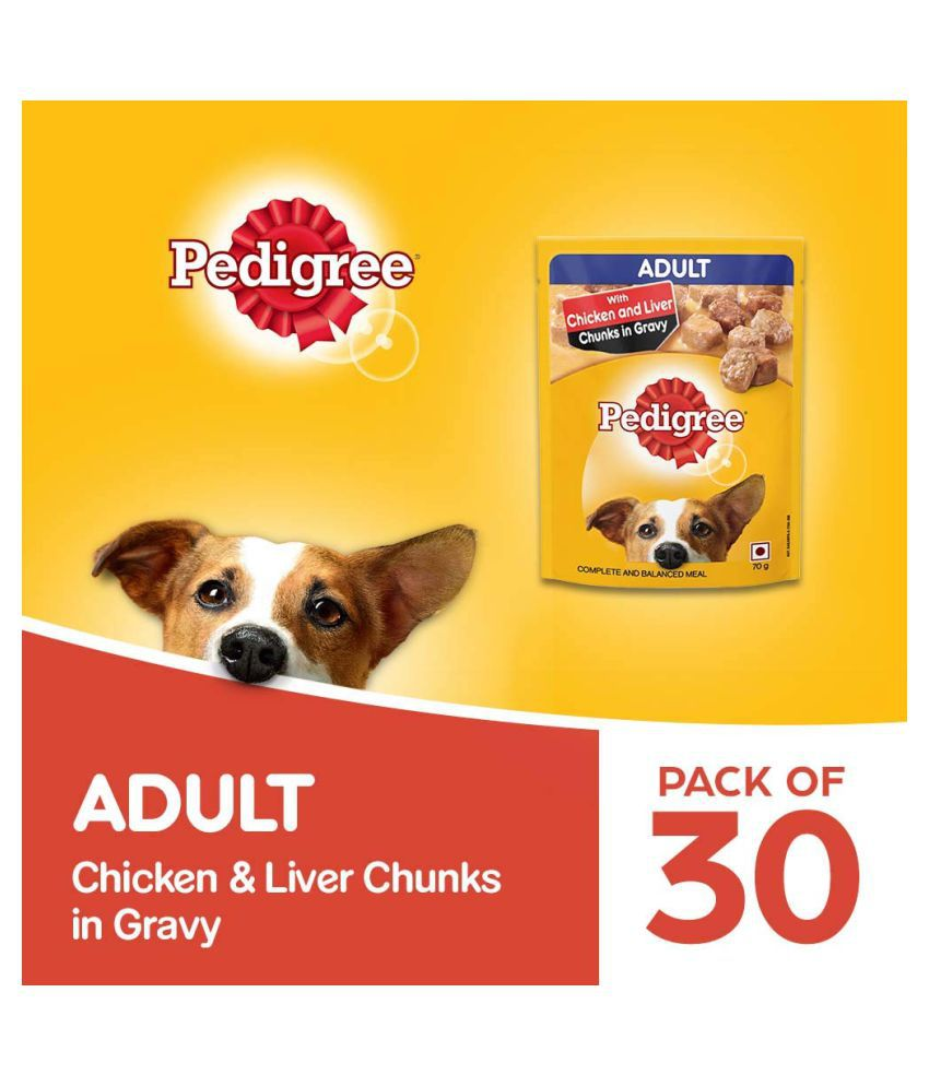Pedigree® Adult Chicken And Liver Chunks in Gravy (Pack of 30) 70 gms Each