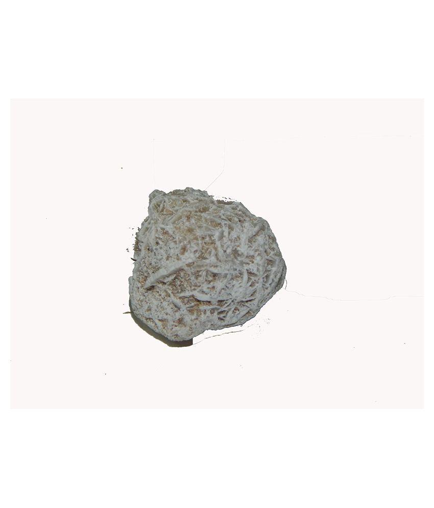 Urancia® Lunar Natural Maru Pushpa Desert Rose 2 piece