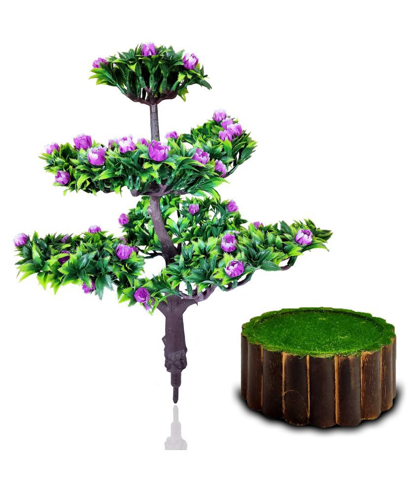 fns store Purple Tulip Bonsai with Round Pipe Pot Purple Greens With Pot Plastic - Pack of 2